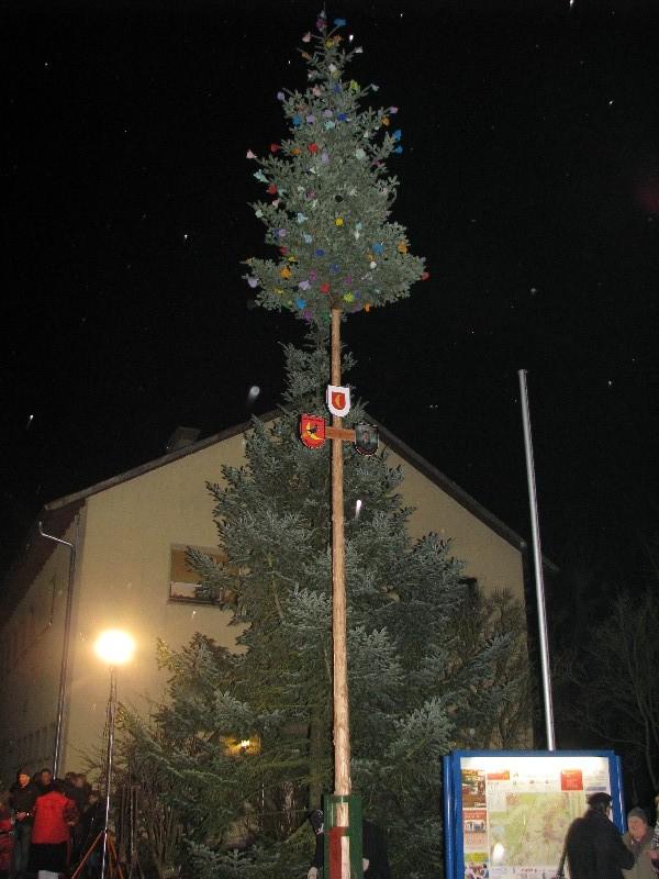 Zum 2. Mal haben die Sumpfdämonen Leiberstung am 11.1. einen Narrenbaum erstellt. Tatkräftig unterstützt wurden Sie von der Freiwilligen Feuerwehr.